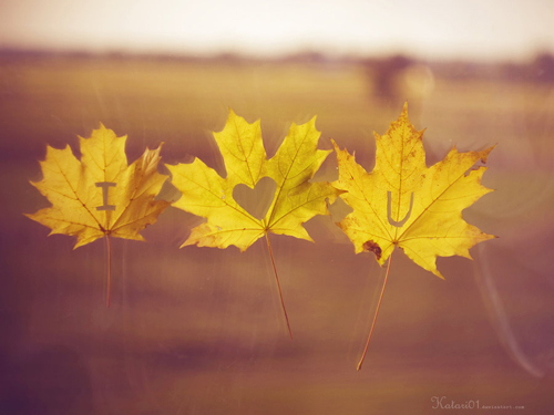 20121041116-i-love-you-autumn-by-katari01-d4ceflv